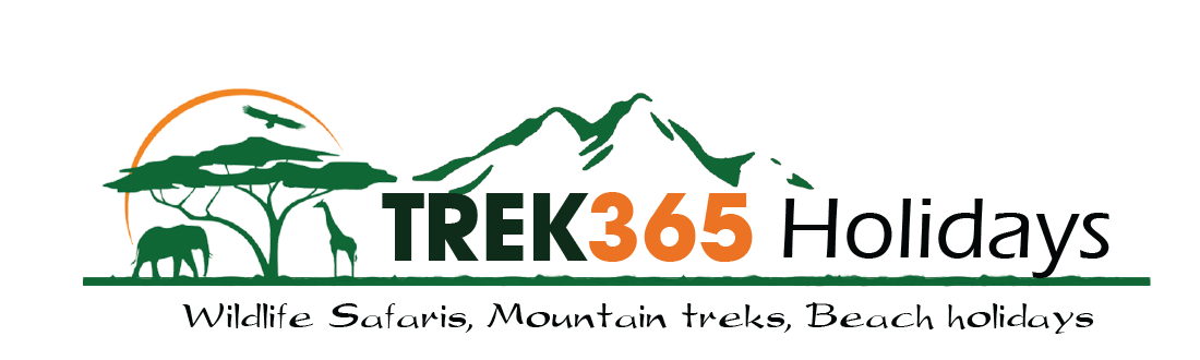 Trek365 Holidays